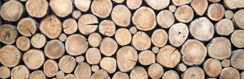 Welche Holzart passt?